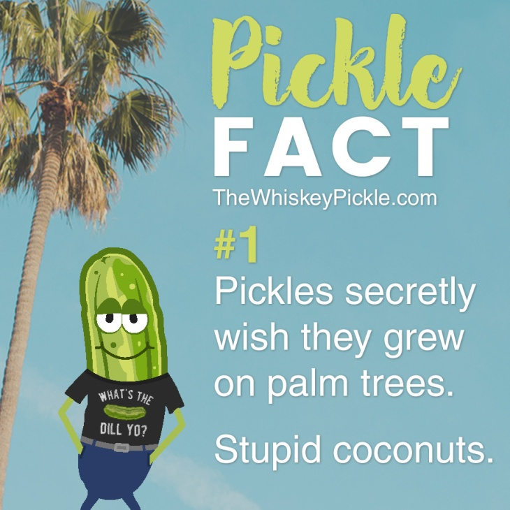 Pickle Facts